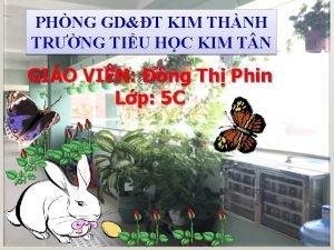 PHNG GDT KIM THNH TRNG TIU HC KIM