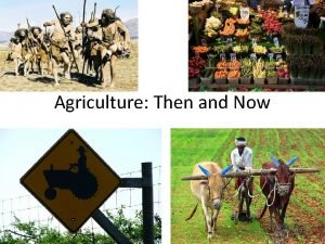 Agriculture Then and Now Agriculture Then was developed