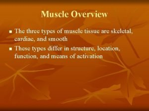 Muscle Overview n n The three types of