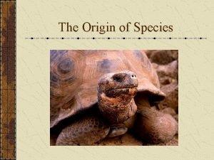 The Origin of Species Species Biological Species Ring