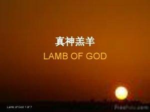 LAMB OF GOD Lamb of God 1 of