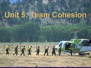 Unit 5 Team Cohesion Unit 5 Objectives n