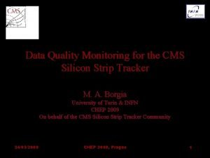 Data Quality Monitoring for the CMS Silicon Strip