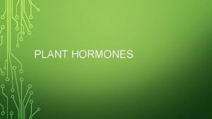 PLANT HORMONES PLANT HORMONES All are produced in