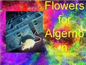 Flowers for Algerno n by Daniel Keyes Central