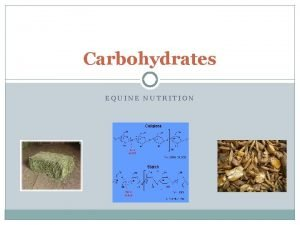 Carbohydrates EQUINE NUTRITION Carbohydrates Principles sources of energy