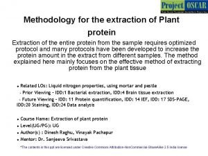 Methodology for the extraction of Plant protein Extraction