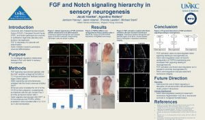FGF and Notch signaling hierarchy in sensory neurogenesis