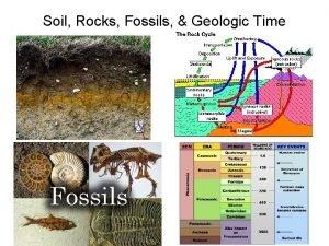 Soil Rocks Fossils Geologic Time Soil a mixture