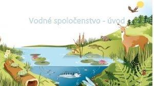 Vodn spoloenstvo vod Voda Voda je najdleitejia ltka