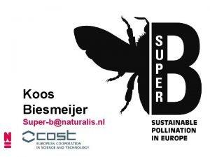 Koos Biesmeijer Superbnaturalis nl WHY SUPERB Sustainable Pollination