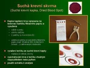 Such krevn skvrna Such krevn kapka Dried Blood