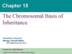 Chapter 15 The Chromosomal Basis of Inheritance Power