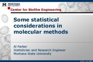 Center for Biofilm Engineering Some statistical considerations in