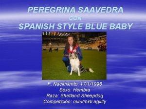 PEREGRINA SAAVEDRA CON SPANISH STYLE BLUE BABY F