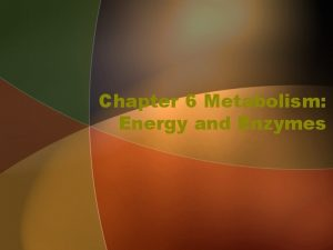 Chapter 6 Metabolism Energy and Enzymes Metabolism The