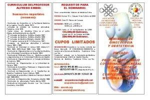 CURRICULUM DELPROFESOR ALFREDO EMBID Seminarios impartidos resumen Seminarios