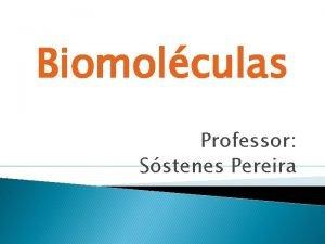 Biomolculas Professor Sstenes Pereira Biomolculas Estruturas e Funes