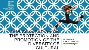 2005 CONVENTION ON THE PROTECTION AND PROMOTION OF