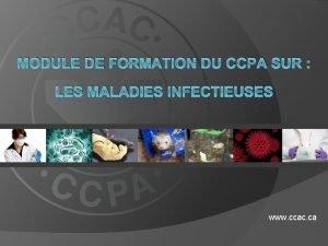 MODULE DE FORMATION DU CCPA SUR LES MALADIES