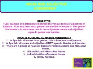NOUN AND ADJECTIVE AGREEMENT OBJECTIVE TLW examine and
