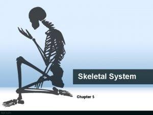 Skeletal System Chapter 5 The Skeletal System Parts