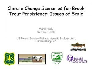 Climate Change Scenarios for Brook Trout Persistence Issues