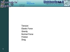 Force Magnitude Tension Elastic Force Gravity Normal Force