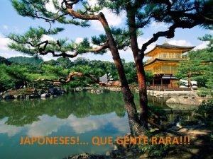 JAPONESES QUE GENTE RARA 13 curiosidades sobre os