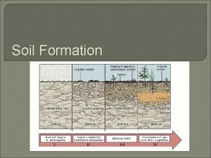 Soil Formation What is soil Soil is the