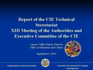 Report of the CIE Technical Secretariat XIII Meeting