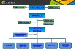 Auditora Externa JUNTA DIRECTIVA Auditora Interna PRESIDENCIA Asesora
