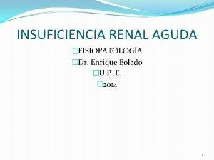 INSUFICIENCIA RENAL AGUDA FISIOPATOLOGA Dr Enrique Bolado U
