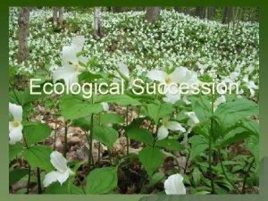 Ecological Succession Succession u u Succession is a