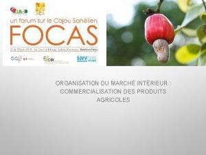 ORGANISATION DU MARCH INTRIEUR COMMERCIALISATION DES PRODUITS AGRICOLES