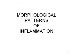 MORPHOLOGICAL PATTERNS OF INFLAMMATION 1 PATTERNS ACUTE INFLAMMATION