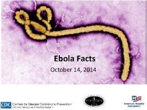 Ebola Facts October 14 2014 Symptoms of Ebola