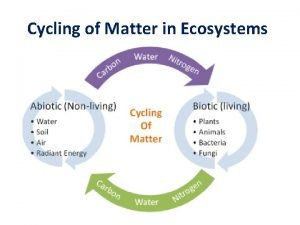Cycling of Matter in Ecosystems Recycling Matter All