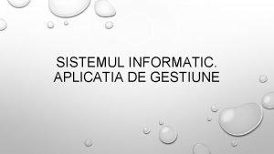 SISTEMUL INFORMATIC APLICATIA DE GESTIUNE DEFINITIE SISTEMUL INFORMATIC
