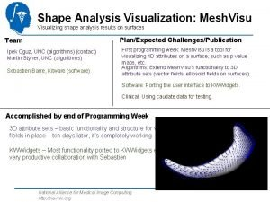 Shape Analysis Visualization Mesh Visualizing shape analysis results