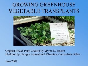 GROWING GREENHOUSE VEGETABLE TRANSPLANTS Original Power Point Created