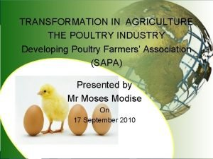 TRANSFORMATION IN AGRICULTURE THE POULTRY INDUSTRY Developing Poultry