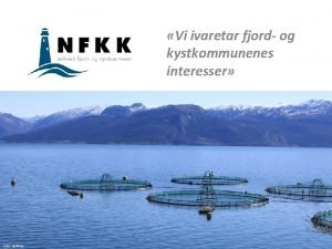 Vi ivaretar fjord og kystkommunenes interesser Foto Nofima