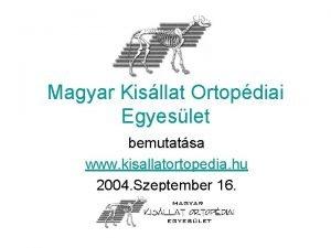 Magyar Kisllat Ortopdiai Egyeslet bemutatsa www kisallatortopedia hu