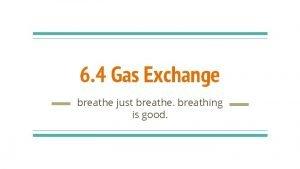 6 4 Gas Exchange breathe just breathe breathing