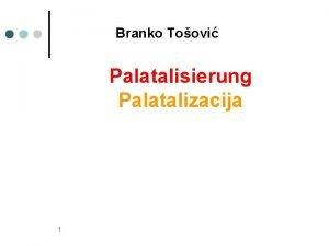 Branko Toovi Palatalisierung Palatalizacija 1 wenn Velare Gutturallaute