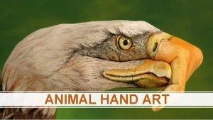ANIMAL HAND ART What animal do you see