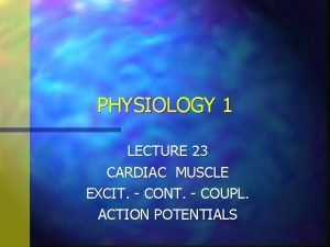 PHYSIOLOGY 1 LECTURE 23 CARDIAC MUSCLE EXCIT CONT