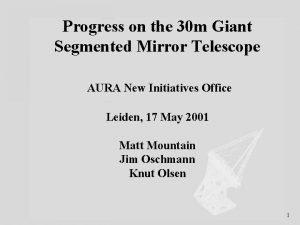 Progress on the 30 m Giant Segmented Mirror