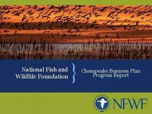 National Fish and Wildlife Foundation Chesapeake Business Plan